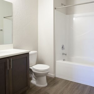 2x2 dag bath brown cabinets with tub/shower combo